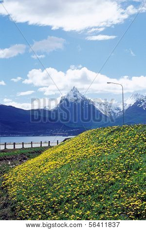 Near the airport of Ushuaia, Argentina in Patagonia