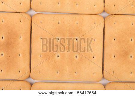 Background of saltine soda cracker.
