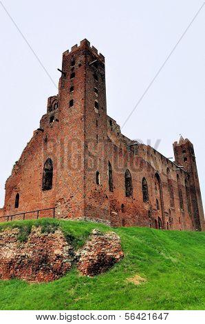 Castle In Radzyn Chelminski, Poland