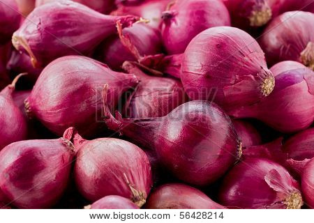 Red Pearl Onions