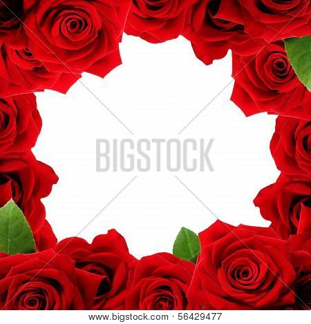 Red Roses Boarder
