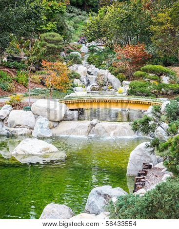 Nature Garden Pond and Bridge, Beautiful Landscape