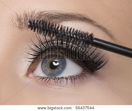 Make-up. Make-up. Toepassing van Mascara. Lange wimpers