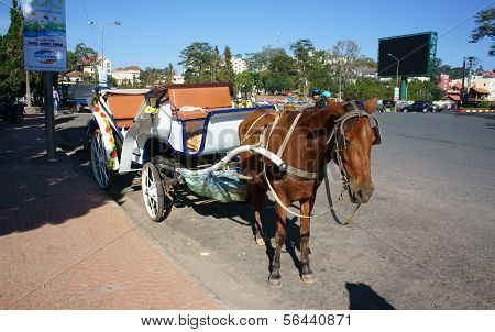 Carriage ( Cart) For Travel (tour)