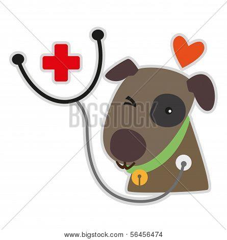 Cuidado del perro