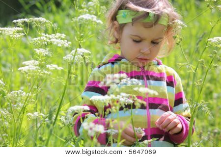 Little Girl On Glade Among Flowers