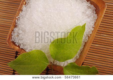 Bay Salt