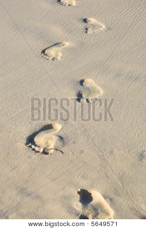 Man Foot Print On A White Sand Beach