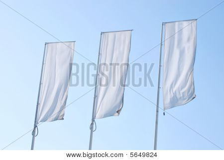 Empty tree Banners