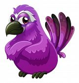 stock photo of angry bird  - Illustration of an angry - JPG