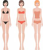 stock photo of knickers  - Vector illustration of female fashion figure in underwear - JPG