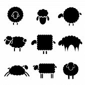 stock photo of sheep  - black silhouette of sheeps on a light background - JPG