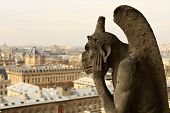 pic of gargoyles  - PARIS  - JPG
