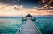 stock photo of jetties  - Idyllic arbor on water - JPG