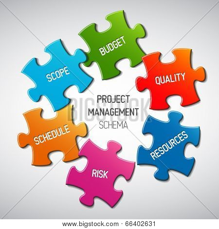 Vector Project management diagram scheme concept