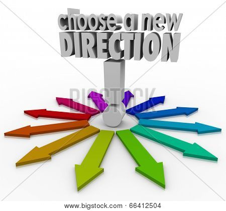 Choose a New Direction 3d words many possible choices before you in changing jobs