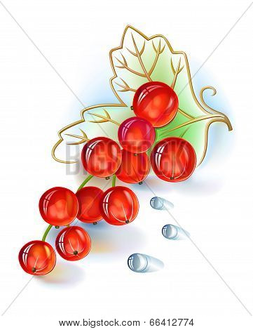 Red Currant Bunch With Leaf And Dew Drops