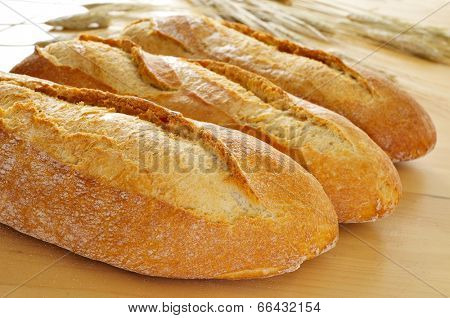 closeup of some demi baguettes or bread rolls on a wooden table, with wheat ears in the background