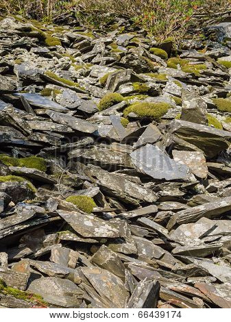 Slate waste from slate mine