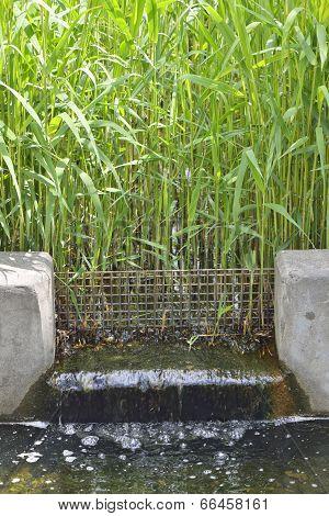 closeup of waterway at water grass field