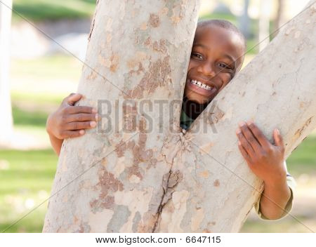 Young African American Boy In The Park