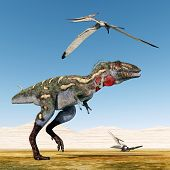 foto of pteranodon  - Computer generated 3D illustration with the Dinosaur Nanotyrannus and the Pterosaur Pteranodon - JPG
