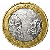 picture of darwin  - A close up rear view of a UK two pound Darwin commemorative coin dated 2009 - JPG