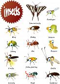 stock photo of fireflies  - Vector Cartoon Insects Big Set - JPG