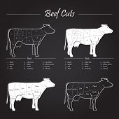 stock photo of beef shank  - Scheme american cuts of beef  - JPG