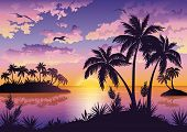 foto of tropical birds  - Tropical sea landscape - JPG