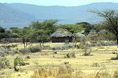 stock photo of mud-hut  - African house made of mud and straw in Kenya - JPG