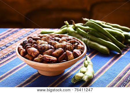Bolivian Roasted Habas (Fava Beans)