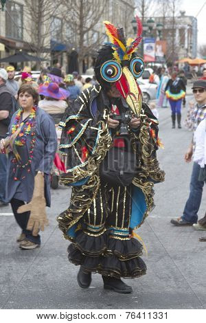 Mardi Gras Bird Man