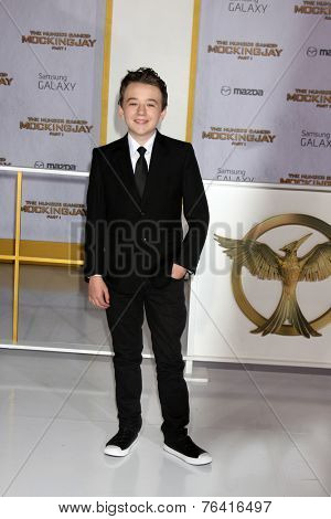 m LOS ANGELES - NOV 17:  Benjamin Stockham at the The Hunger Games: Mockingjay Part 1 Premiere at the Nokia Theater on November 17, 2014 in Los Angeles, CA