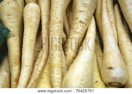 Yellow Parsnips