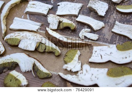 Boletus Edulis Mushroom Cut For Droughting