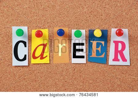 Career Single Word
