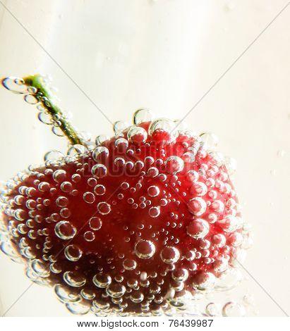 Bubbly Cherry