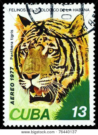 Vintage  Postage Stamp. Wild Big Cats. Tiger .