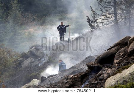 Firefighters Extinguishin Forest Fire