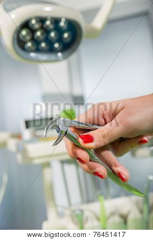 Doctor holding pliers for pulling out the tooth.
