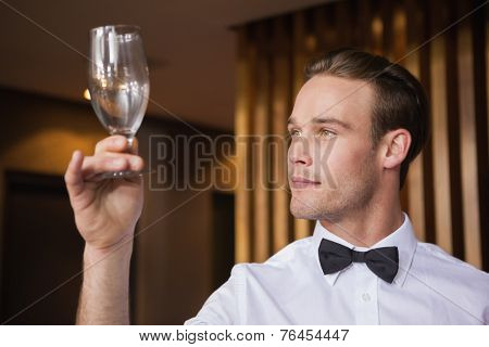 Handsome waiter inspecting a wine glass in a bar