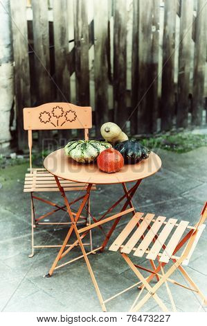 Autumn Decoration With Colorful Pumpkins