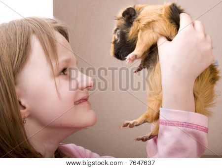 Little Girl Holding Guinea Pig