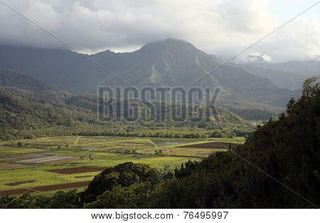 Hanalei Valley, Kauai, Hawaii