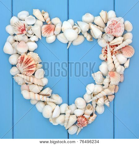 Sea shell selection forming a heart frame over wooden blue background.