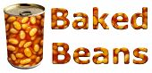 image of phaseolus  - Baked beans can along with textured words on an isolated white background with a clipping path - JPG