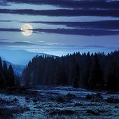 foto of moon-flower  - forest glade with flowers in the cool shade of the trees a hot autumn day at night in full moon light - JPG