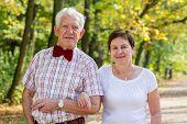 stock photo of stroll  - Portrait of Happy elderly marriage strolling in park - JPG