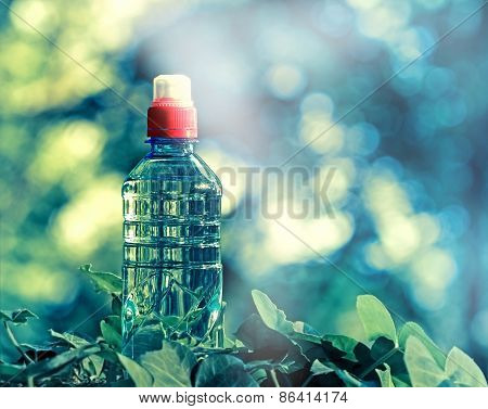 Bottled spring water - purified water